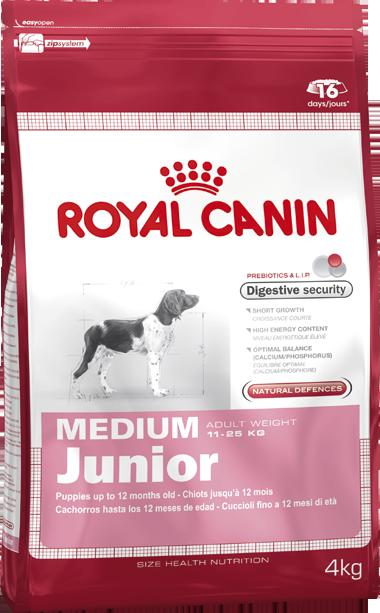 Гастро-Интестинал ГИ 32 фелин Royal Canin 400г. – купить в